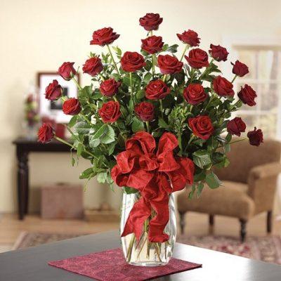 hoa hồng hội an