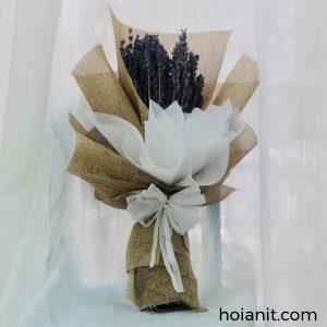 hoa lavender