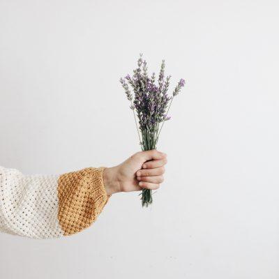 shop hoa oải hương đà nẵng