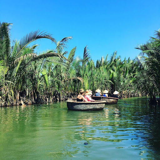 rừng dừa bảy mẫu 2