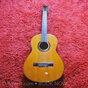 shop bán đàn guitar uy tín