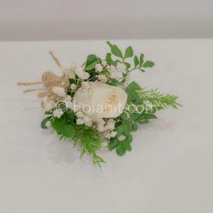 hoa chú rể hội an