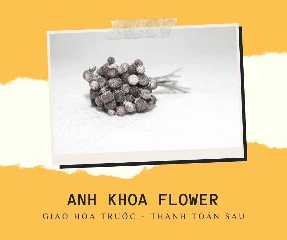 Bó hoa dâu tây Hội An