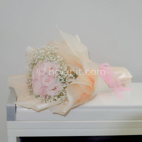hoa hội an