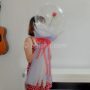 hoa hồng trong bong bóng