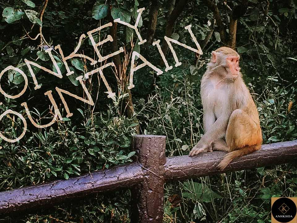 hoi an to monkey mountain 2