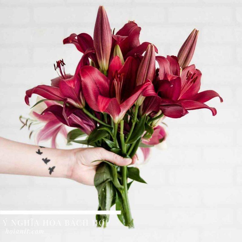 Ý nghĩa hoa loa lèn