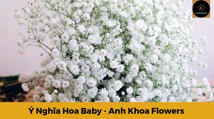 Ý nghĩa hoa Baby